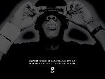 Jay-Z [1] Black Album wallpapers