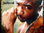 Ja Rule [5] The Last Temptation